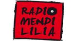 Radio Mendililia 89.6 FM Mauleon Licharre
